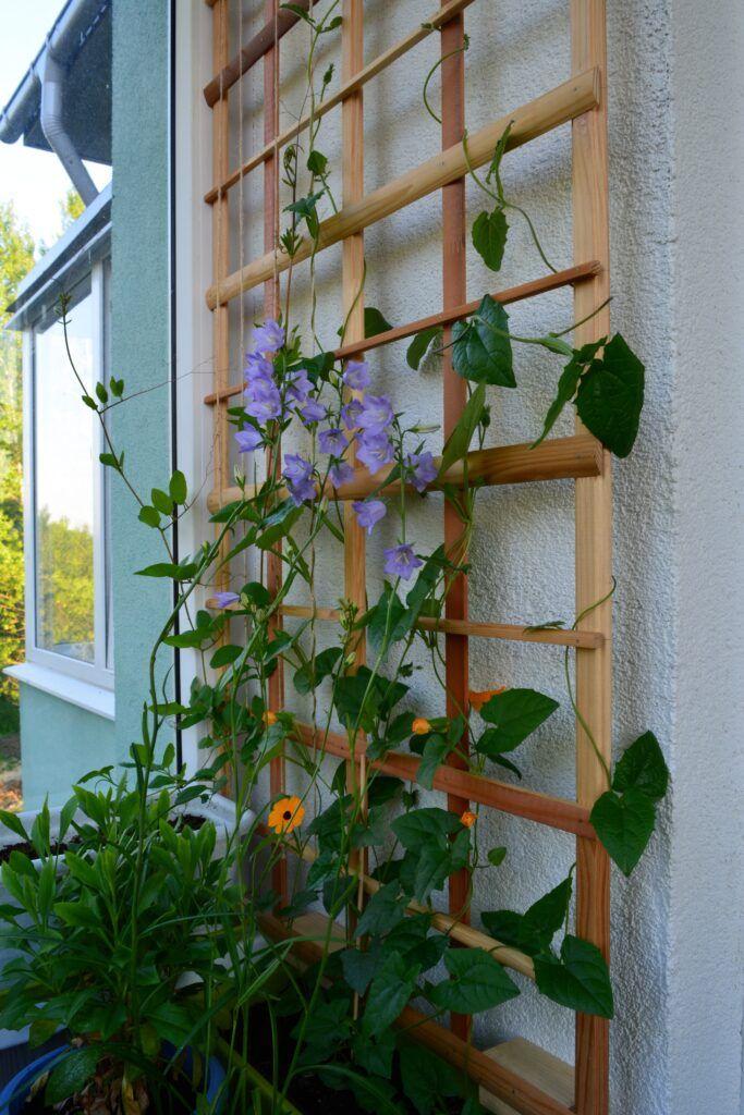 balcony-vertical-garden
