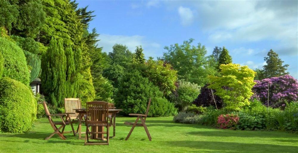 creating-an-air-quality-garden