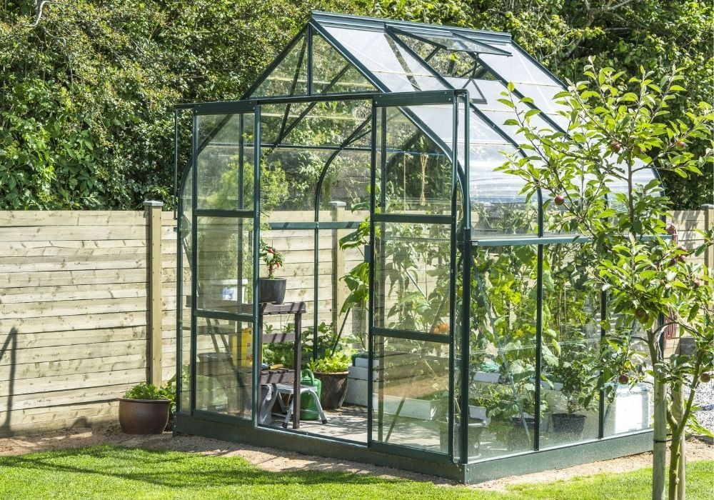 greenhouse-in-a-garden-near-wooden-fence