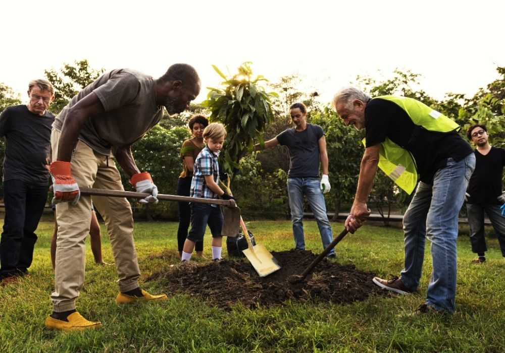 group-of-people-planting-tree-together
