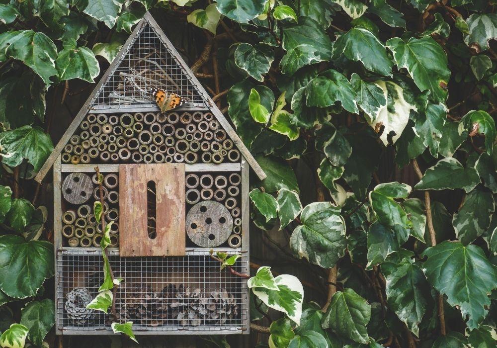 insect-hotel-school-garden
