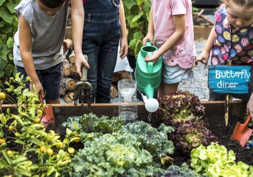 kids-school-garden