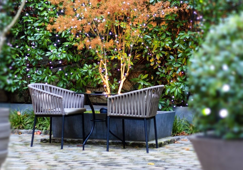 patio-table-and-chairs-in-a-winter-garden
