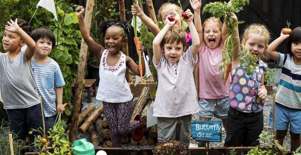 school-garden-growing-project-resource