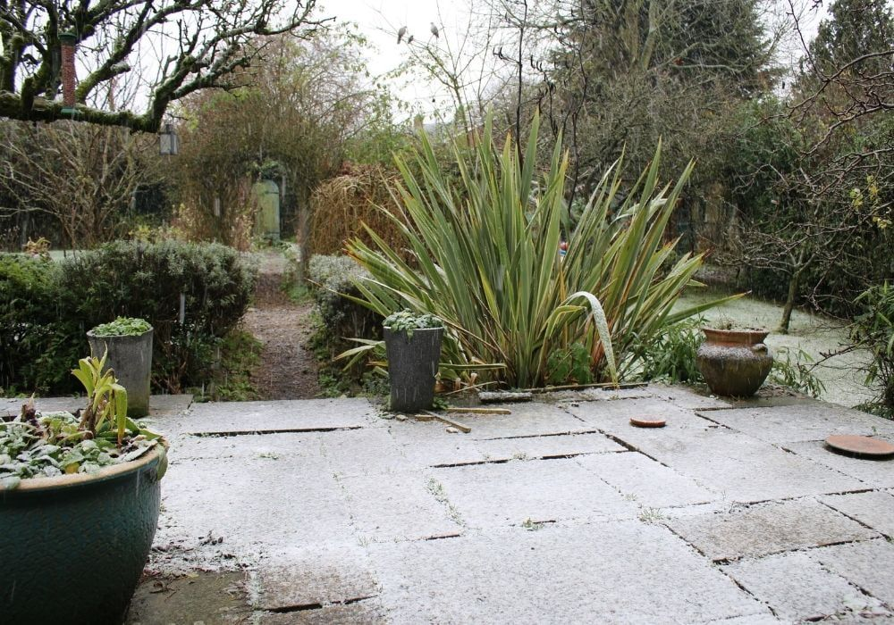snow-scene-in-an-english-garden-from-a-stone-patio