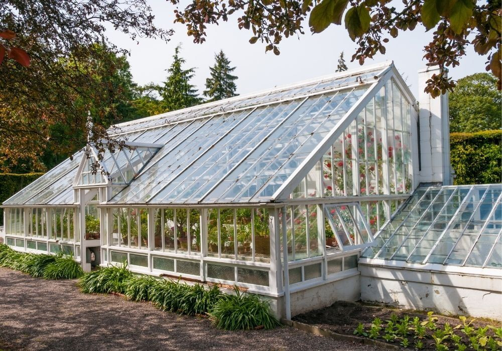 traditional-victorian-greenhouse