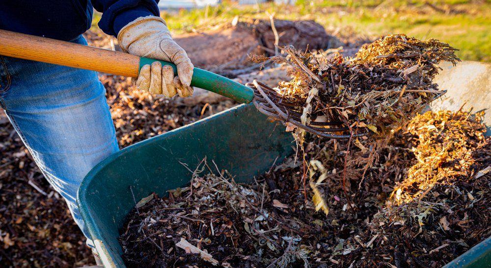 Person adding amendments to soil