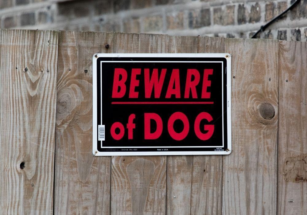 beware-of-dog-sign-garden