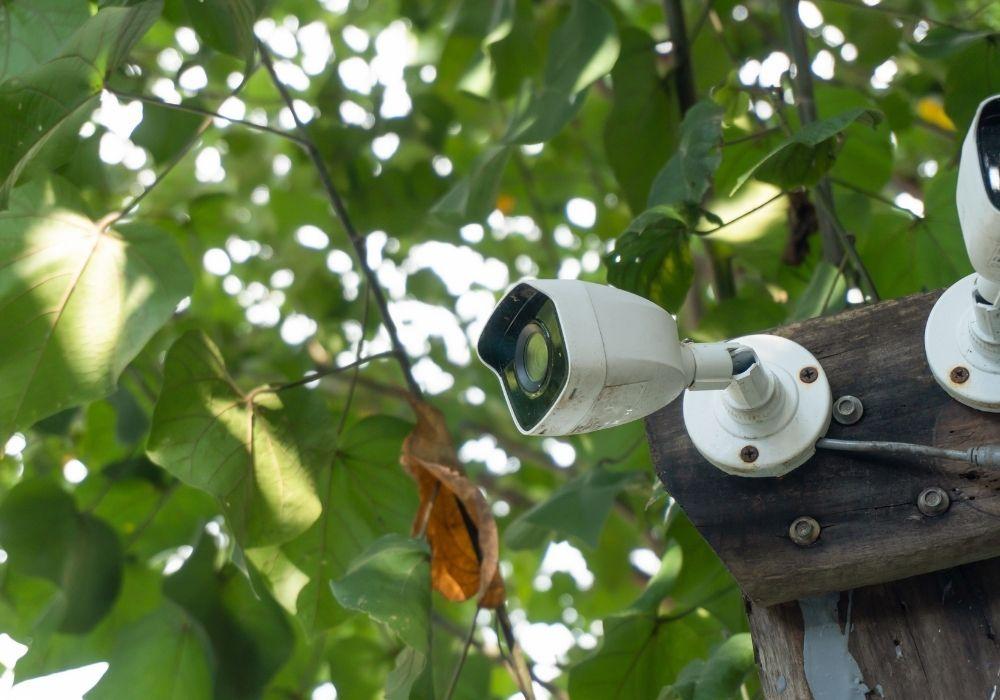 burglar-proof-garden-cctv