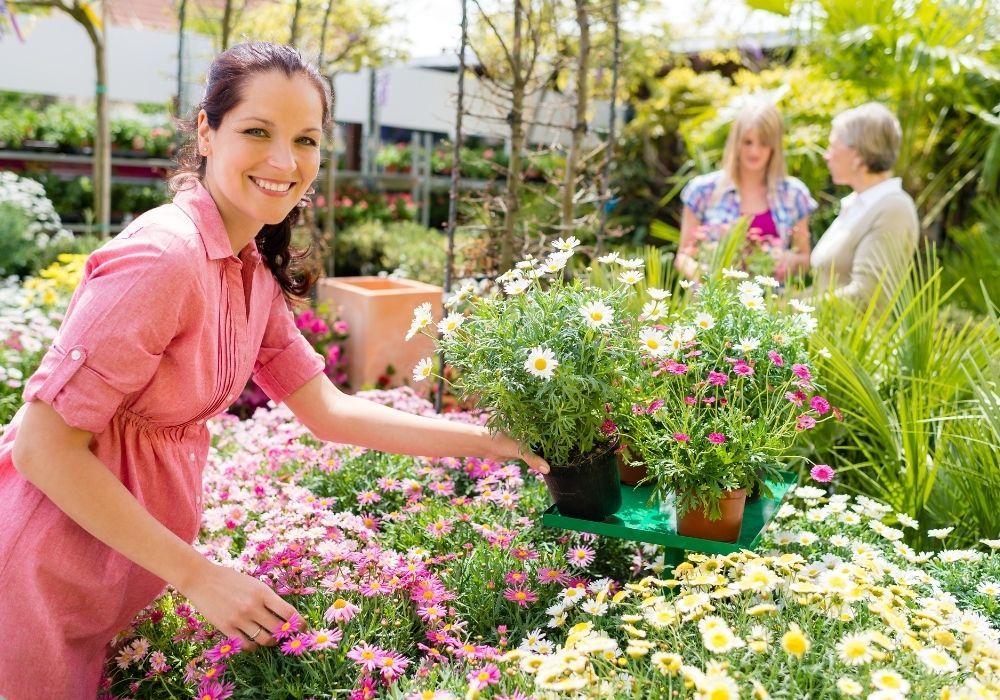 spring-garden-centre