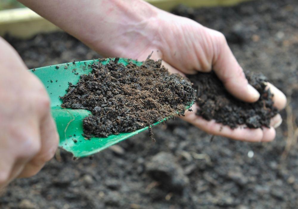 spring-garden-compost