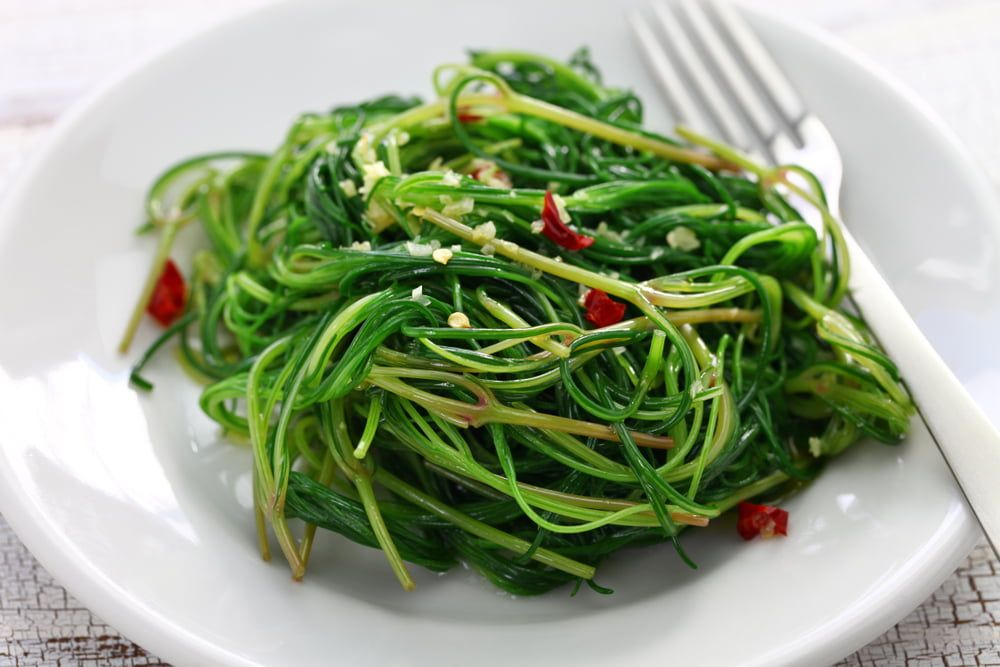 Cooked agretti on plate