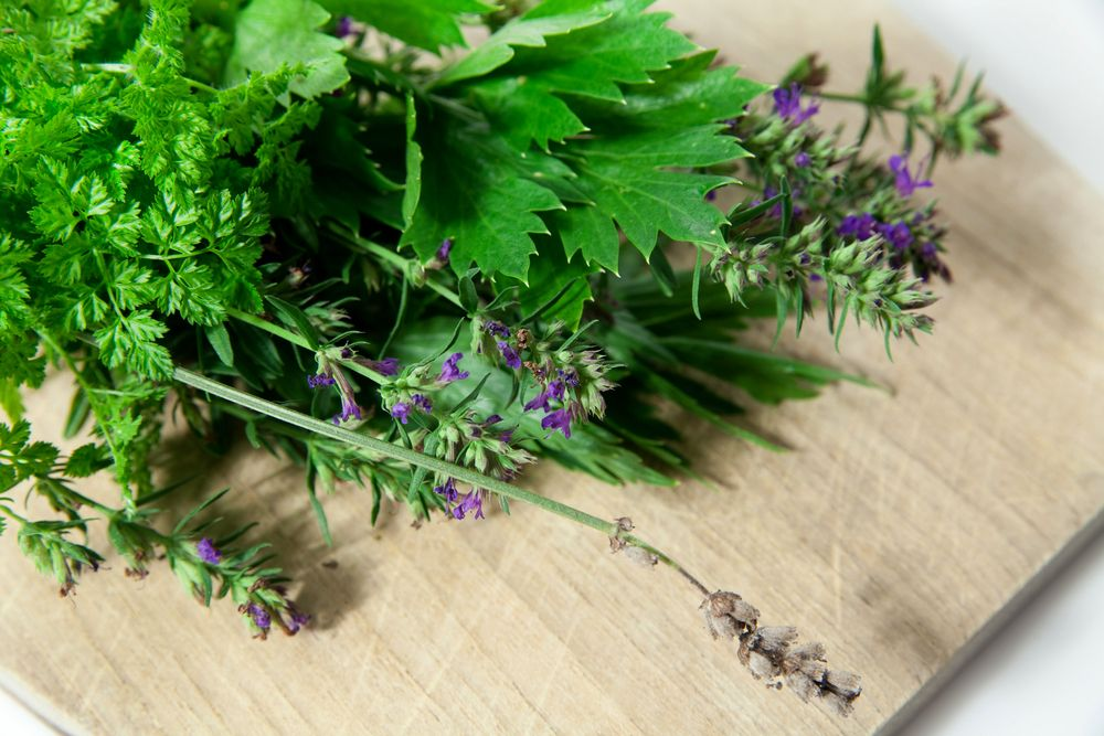 Chervil and other herbs on chopping board
