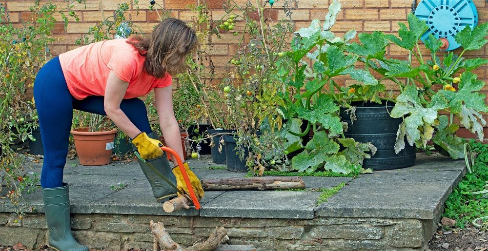 what-to-do-in-the-garden-in-september
