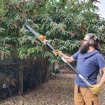 Terratek-550W-Long-Reach-Hedge-Trimmer-Review