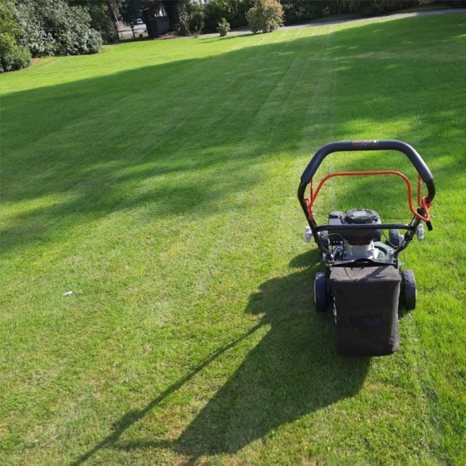 Webb-Classic-WER410SP-Self-Propelled-Petrol-Mower-Review-performance