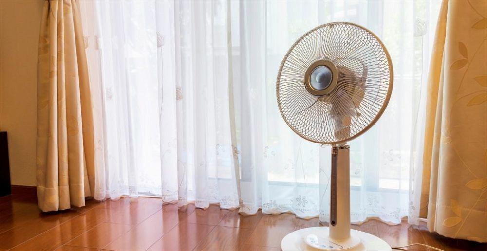 best-pedestal-fan
