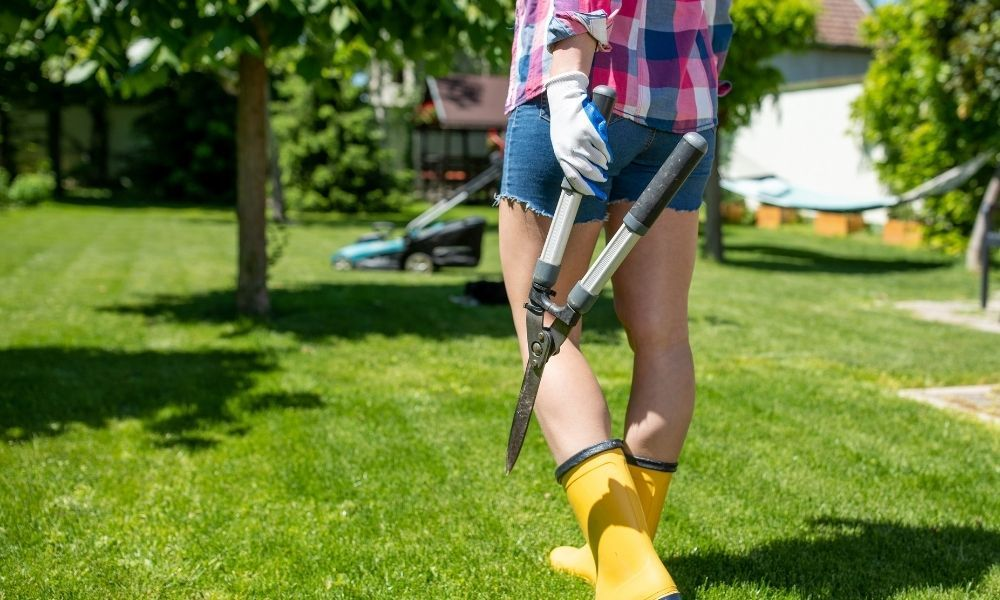 how-long-after-planting-grass-seed-can-you-walk-on-it
