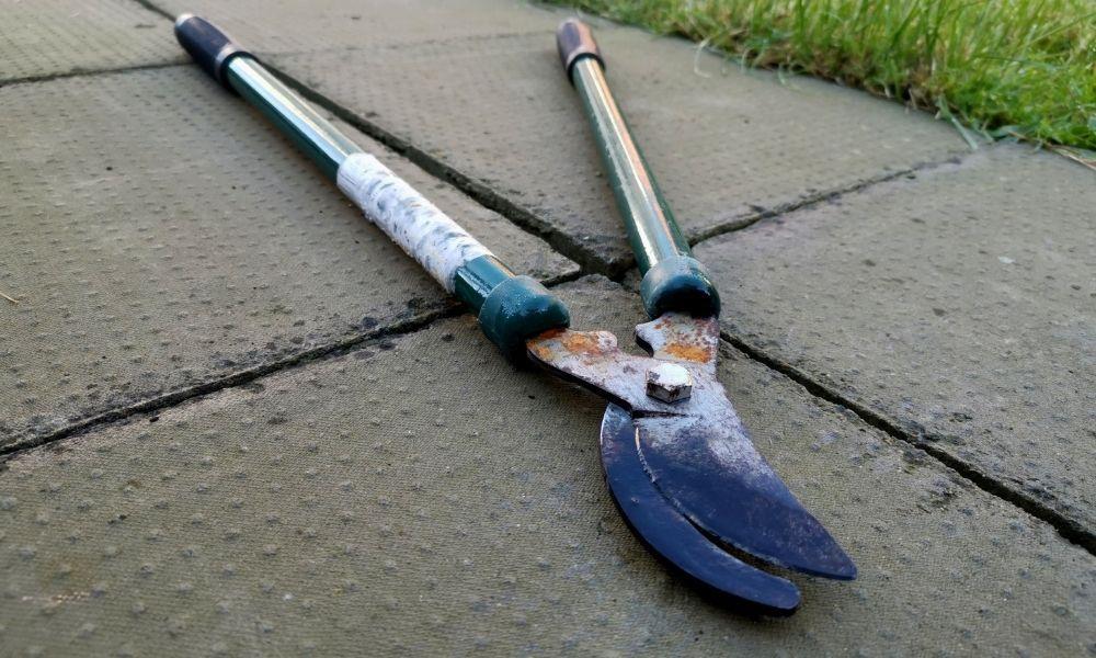 how-to-clean-rusty-garden-tools