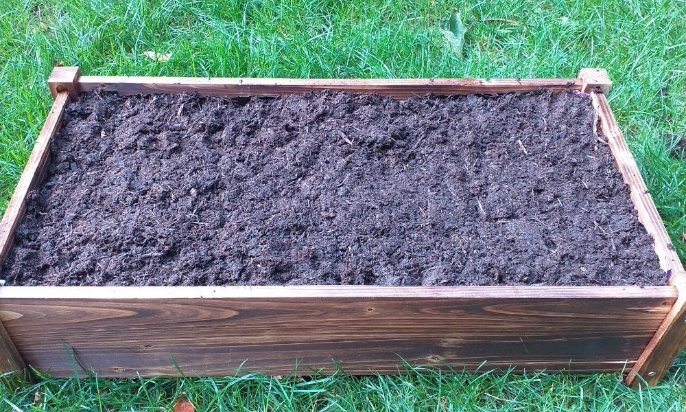 how-to-line-a-wooden-planter-box