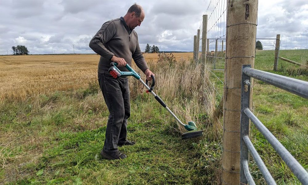 how-to-use-a-strimmer